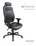 eCentric Executive