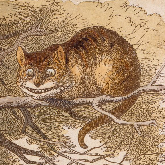 Illustration of Cheshire Cat