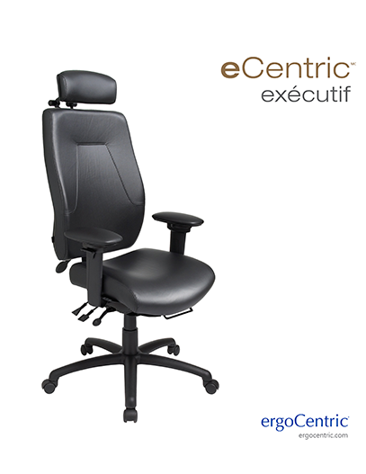 eCentric Executive Info Sheet - French
